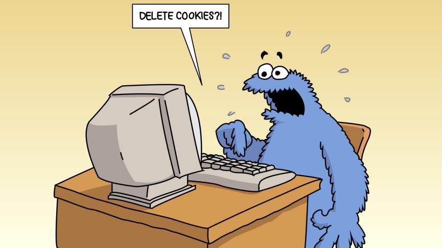 Borrar Cookies